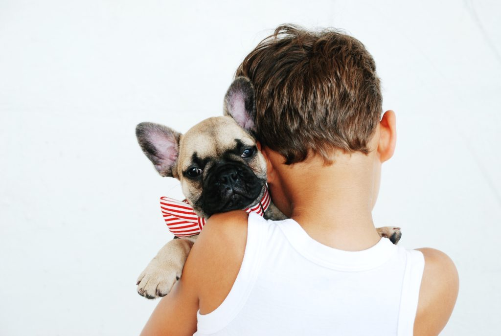 a boy holding a puppy with a bow around its neck